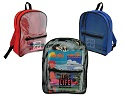 Clear backpacks with solid sides and back, assorted colors